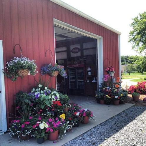 Gorgeous entrance to the produce stand