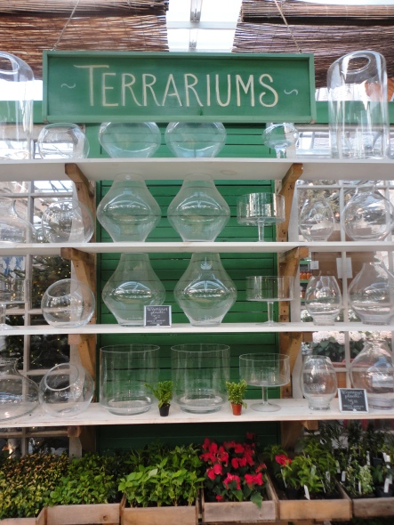 All the fixings for a perfect terrarium