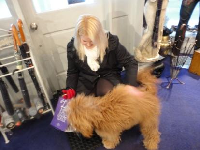Jules, the dog whisperer
