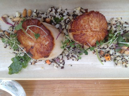 Scallops with roasted barley and quinoa