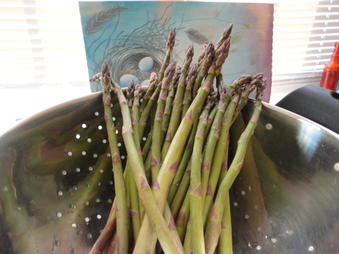 Filasky's Asparagus