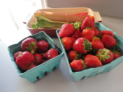 These strawberries are from my CSA and Bayberry Farm (which I bought at the Newark Farmers Market).