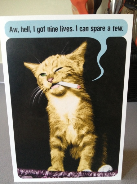 Whenever I imagine MY cats doing human things like washing dishes (which is often) they are always smoking a cigarette and looking surly. So this card is perfection.