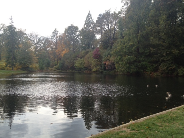 Longwood lake